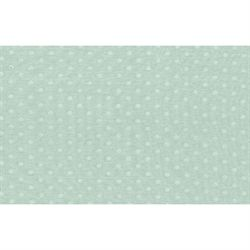 Cotton Minky Mint