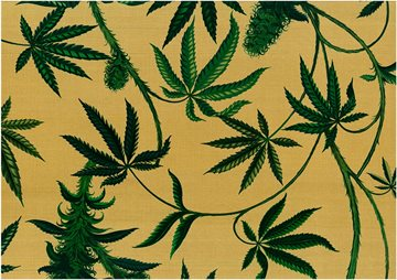 Hemp garden canvas